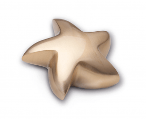 Keepsake Brushed Gold Tone Star