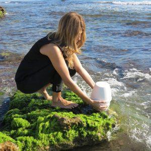 Organic Salt Urn Biodegradable